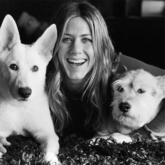 jennifer-aniston-dogs-insta