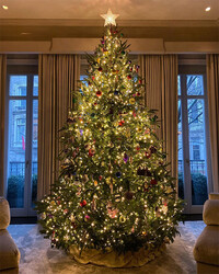 4-Kelly-Ripa-house-Christmas-tree