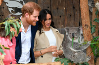 meghan-harry-taronga-zoo