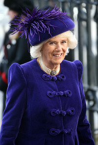 duchess-cornwall-commonwealth