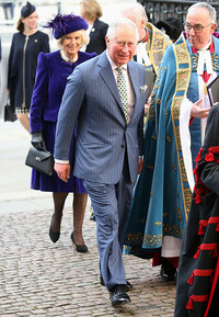 prince-charles-arrive-commonwealth