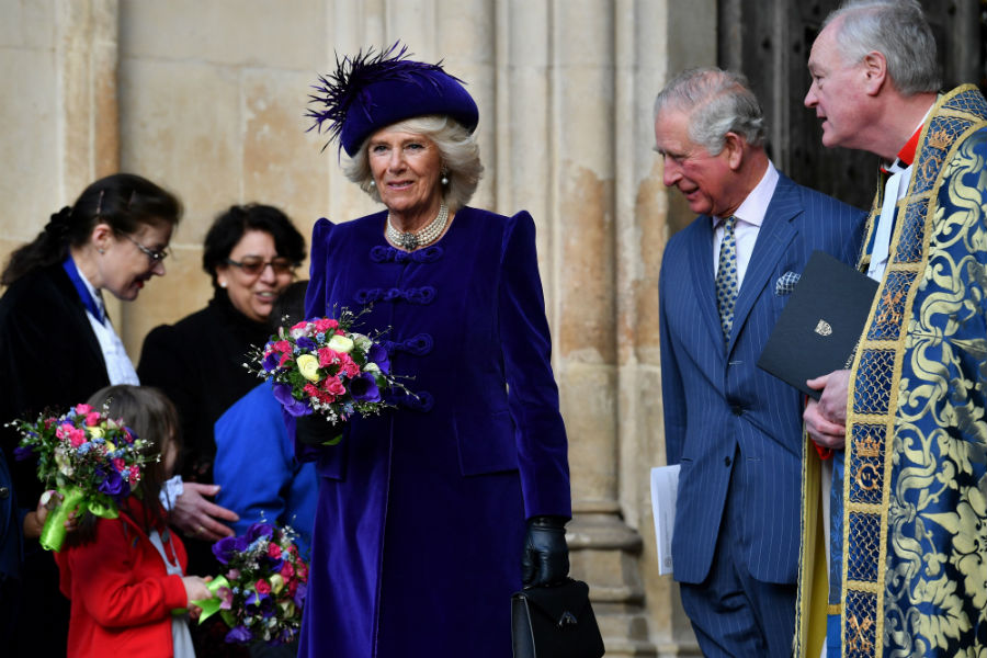 prince-charles-camilla-commonwealth