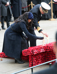meghan markle poppies