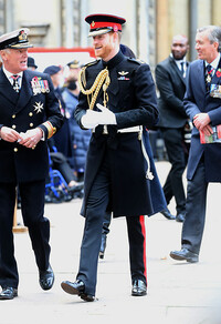 prince harry walking