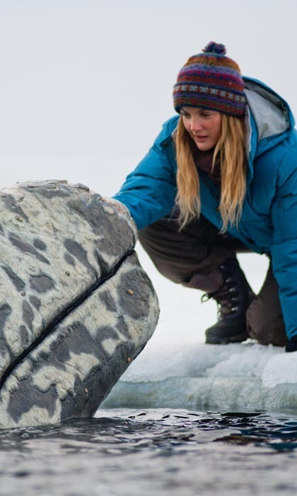<h3>DREW BARRYMORE</h3> 