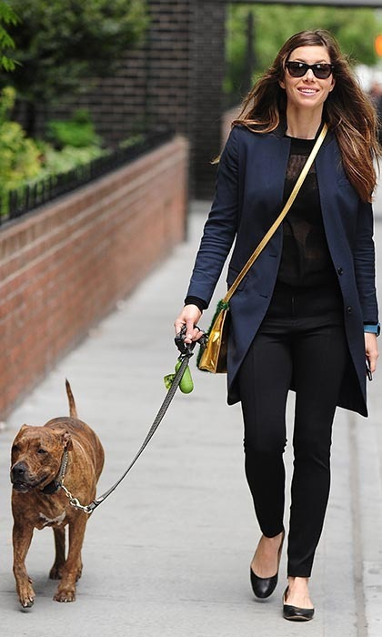 Jessica Biel and her brindle pitbull, Tina (of #TuesdayswithTina), made a very stylish pair when they were spotted strolling around the East Village together.