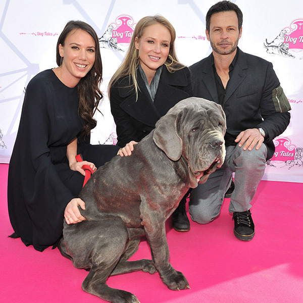 Stories Tales Go Dog Go: Jewel And Sam Roberts Band Help Open Dog Tales Rescue And