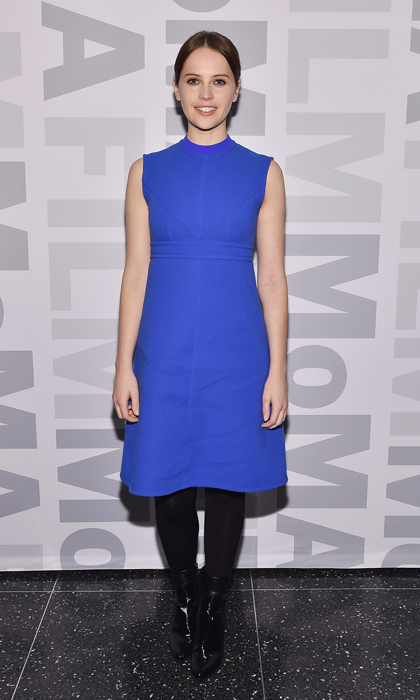 'The Theory of Everything' actress Felicity Jones took to the film's MoMA screening in New York wearing a sixties-inspired cobalt shift dress by Joseph and patent leather ankle boots.