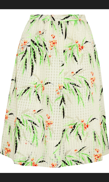 Elizabeth and James Avenue printed organza skirt, $407, net-a-porter.com