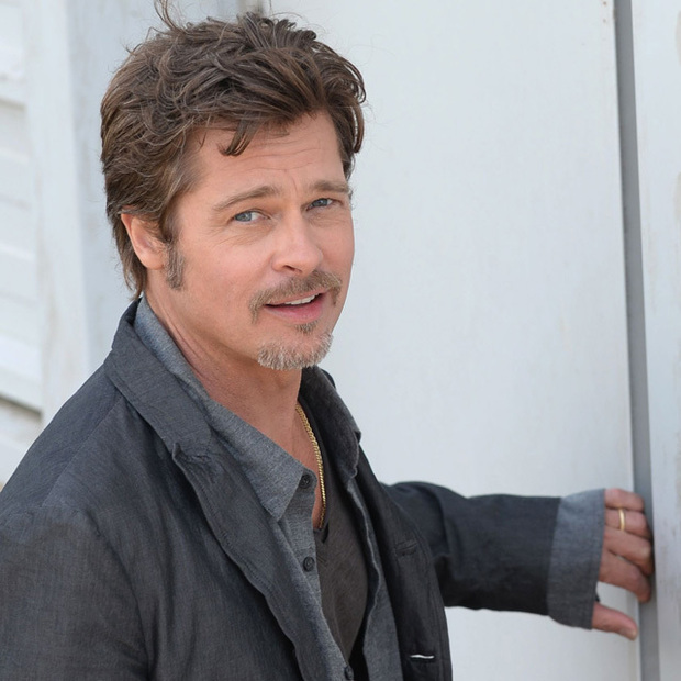 Brad pitt joins ryan gosling in the fight for costco chickens hello