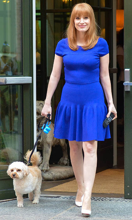 The love of Jessica Chastain's life is her three-legged pooch Chaplin. In 2013, the rescue pup made his Broadway debut when he strolled onto the stage while Jessica performed in the Broadway play 'The Heiress.'