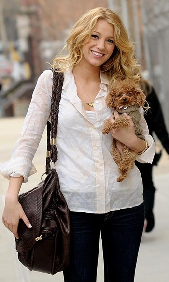 Blake Lively can hardly stand to be separated from her adorable little Maltipoo, Penny, who was a constant companion on set during her 'Gossip Girl' days. And just look at Penny's furry little face – can you blame her?