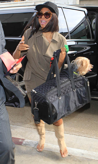 PETA ambassador and 'Empire' star Taraji P. Henson arrives at LAX with her best travel buddy, pup Willie. 