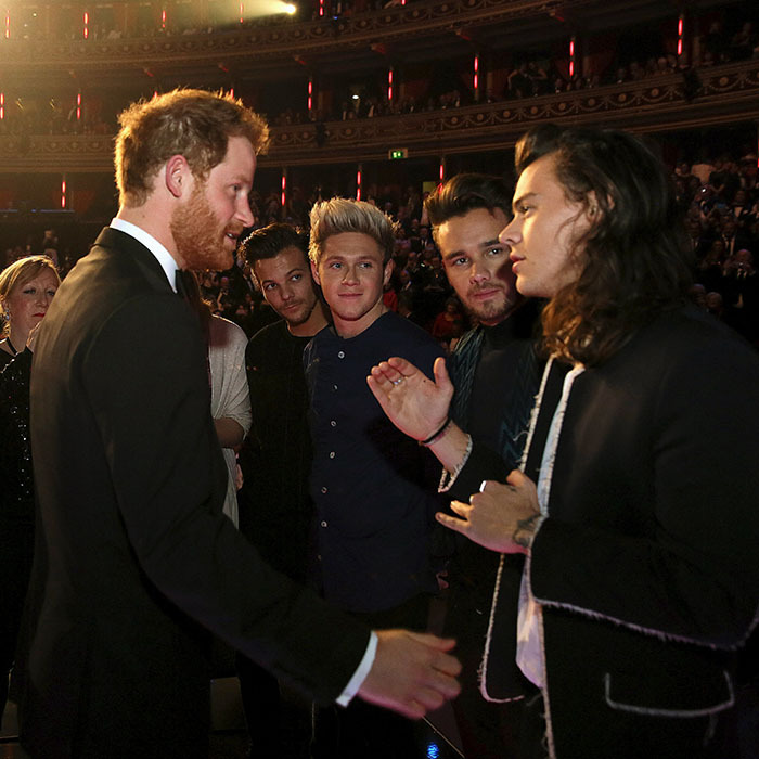When Harry met Harry! The dashing prince and One Direction's long-haired heartthrob got acquainted at the Royal Variety Performance on Nov. 13 at Albert Hall in London.