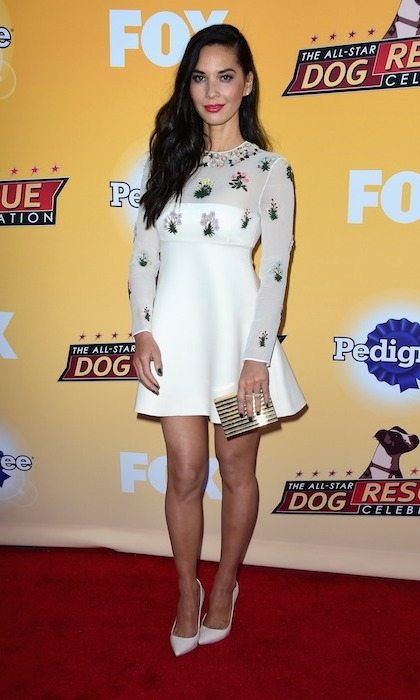 <p>Animal lover Olivia Munn fired up the red carpet in Beaded Valentino at the All-Star Dog Rescue Celebration. </p>