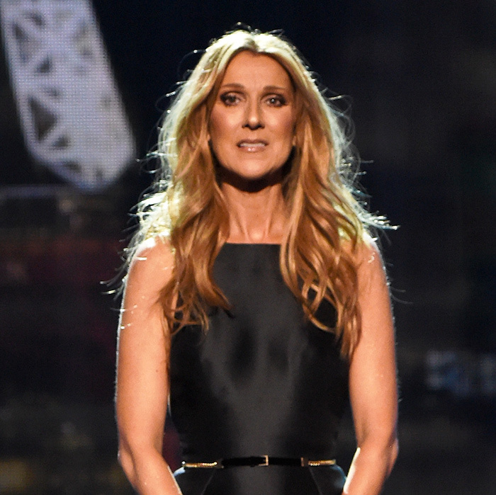 <p><b>Celine Dion</b> was a bronzed beauty during a touching tribute to Paris, wearing her blond locks in loose waves and a copper smoky eye.</p> 