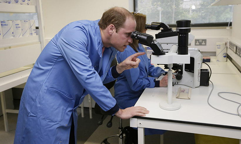 <p>Prince William peered through a microscope at Royal Marsden Hospital, a leader in cancer research, before meeting with patients receiving groundbreaking new treatments on Nov. 18.</p>