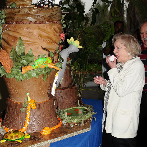 <p>At 93, Betty White has seen more than a few birthday cakes. Here, the animal-lover rings in her 90th with a jungle-themed masterpiece.</p> 