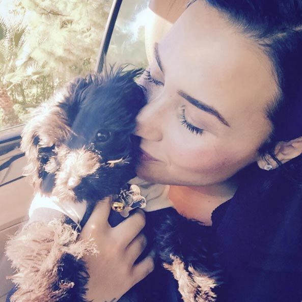 Following the death of her pet dog Buddy, Demi Lovato welcomed another puppy, named Batman, into her family. With a face this cute, how could she not share lots of pictures of him on Instagram?