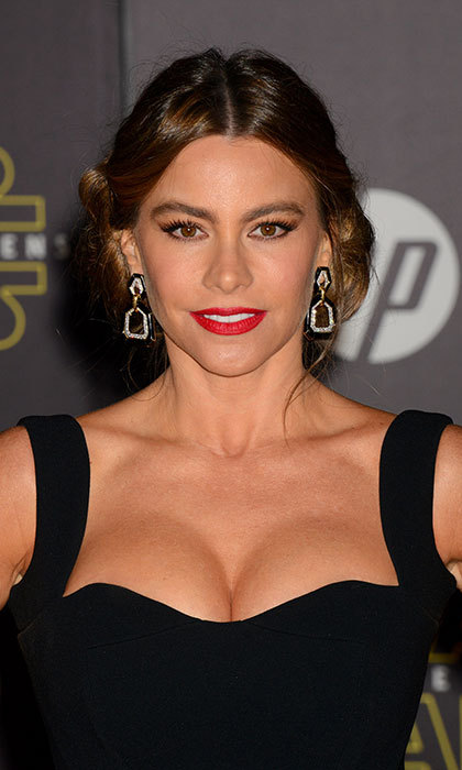 <strong>Sofia Vergara</strong><br>