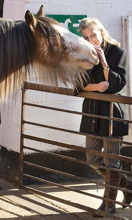 <p>Sophie, Countess of Wessex, shared a special moment with a blind rescue horse during a visit to the Remus Memorial Horse Sanctuary in Essex.</p>