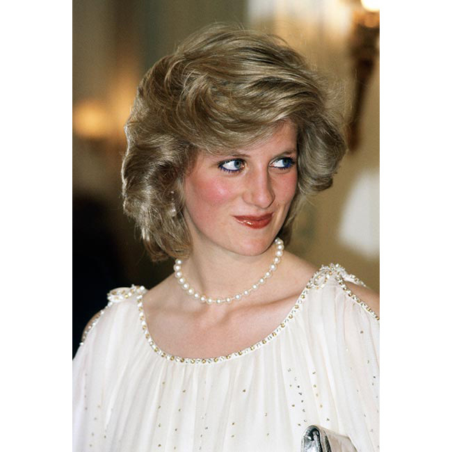 <strong>Princess Diana</strong><br>
