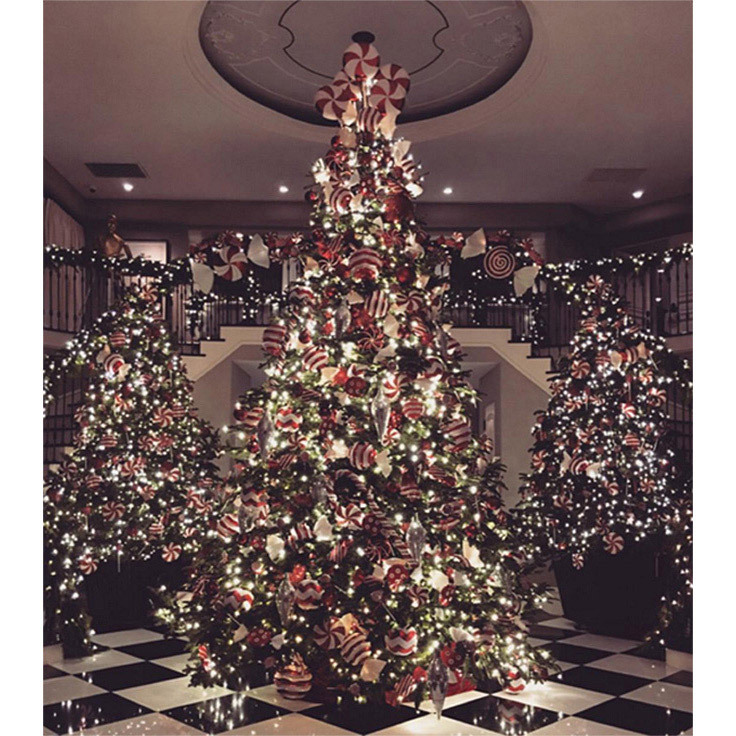 "Kim Kardashian shared a picture of her mum Kris Jenner's foyer, featuring not one but three lavishly decorated trees. ""Candy Cane Lane Kris Jenner Style,"" wrote Kim.