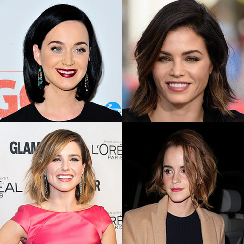 <b>B... Bob Brigade</b>