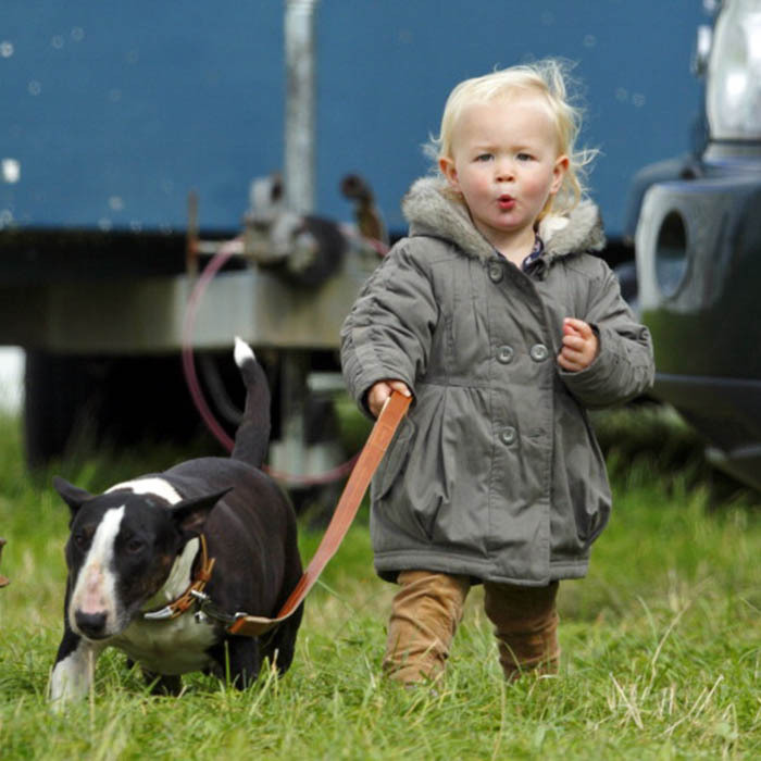 The fiercely independent toddler, seen here at 21 months, takes her grandmother's (Princess Anne) dog for a walk. 