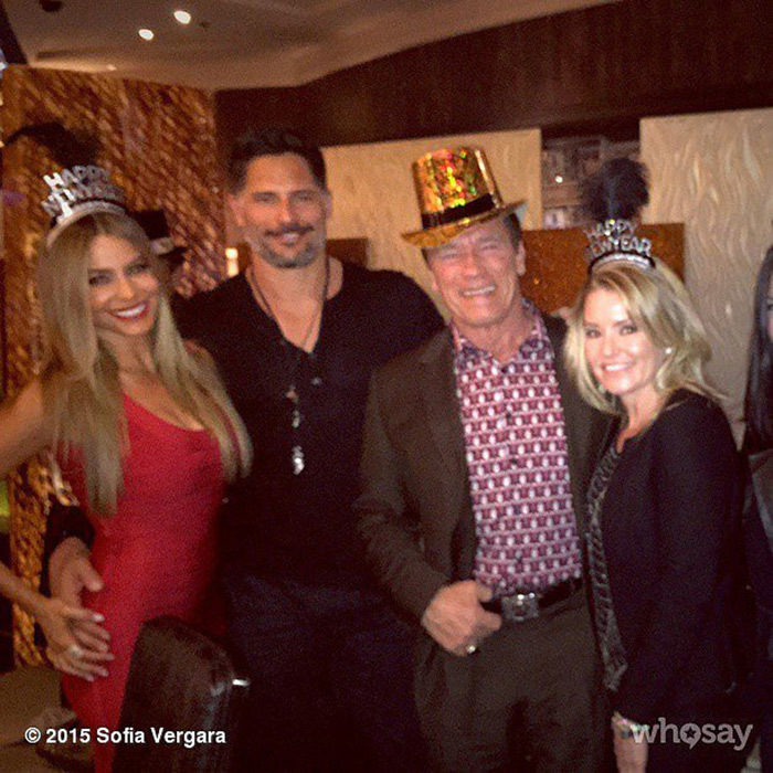 After watching Britney Spears perform in Las Vegas, Sofia Vergara and Joe Manganiello welcomed 2015 alongside Arnold Schwarzenegger.