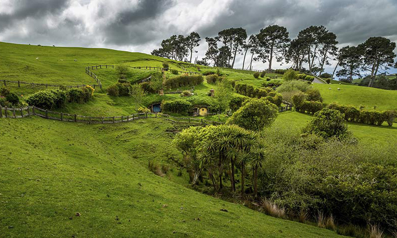 <p><strong>New Zealand</strong><br>