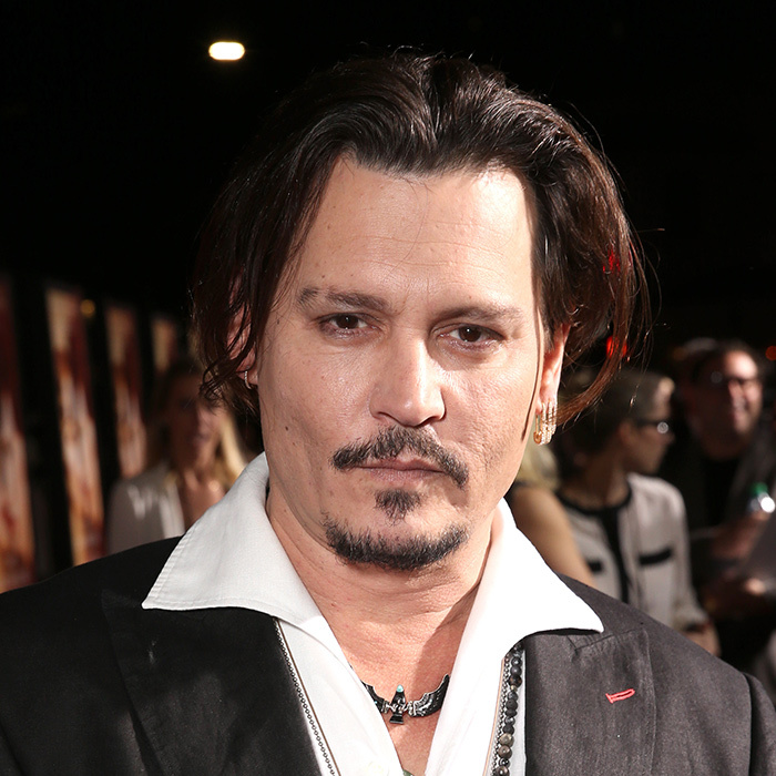 <h2>Johnny Depp</h2>