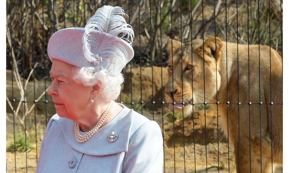 The Queen was joined by Prince Philip to officially open the new Land of the Lions exhibit at ZSL London Zoo on Thursday - the zoo she so often enjoyed to visit as a child.