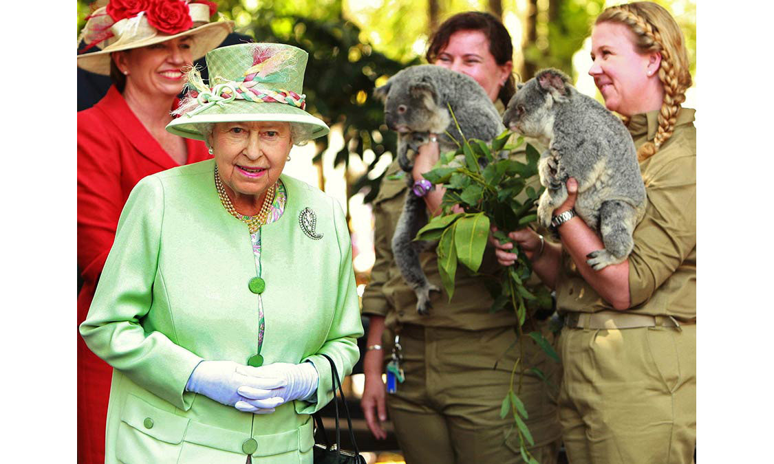 Queen Elizabeth came face to face with koalas during a visit to a wildlife park in Brisbane during her official tour of Australia in October 2011.