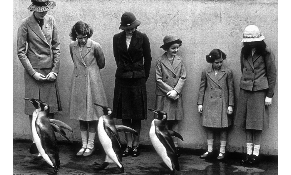 On the same trip the young Princesses Elizabeth and Margaret were photographed with the penguins as they toured London Zoo.