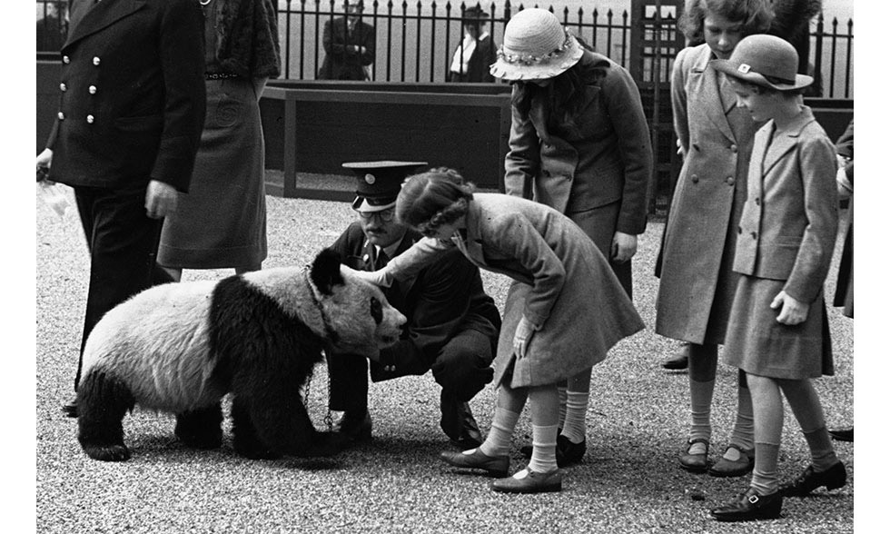Princesses Elizabeth and Margaret also got to meet a panda during their day trip to the zoo.