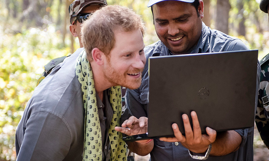 "He was shown the photos of his efforts on a laptop, prompting Harry to joke: ""Not as good as a tiger.""