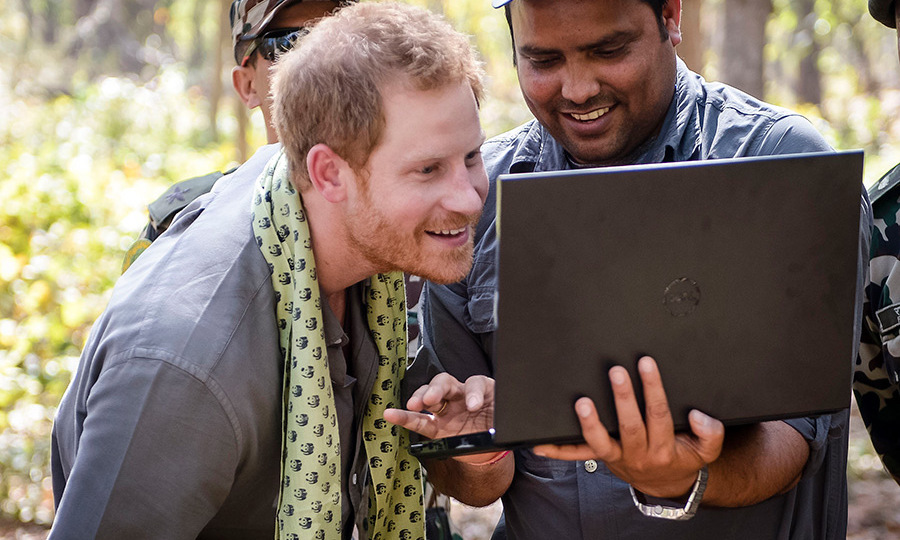 "After being shown the photos of his efforts on a laptop, he joked he was ""not as good as a tiger"".