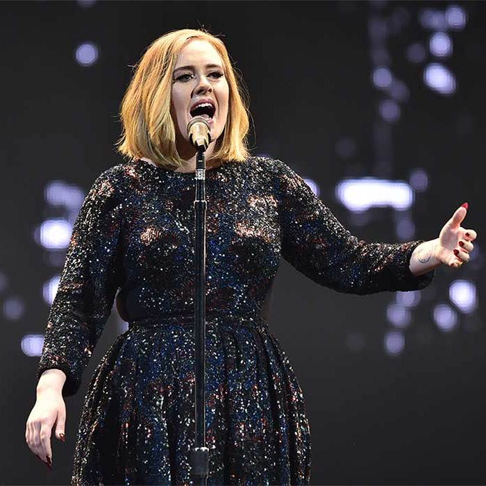 Adele has said Rebel Wilson would need to ask for permission to portray her in a biopic of her life.