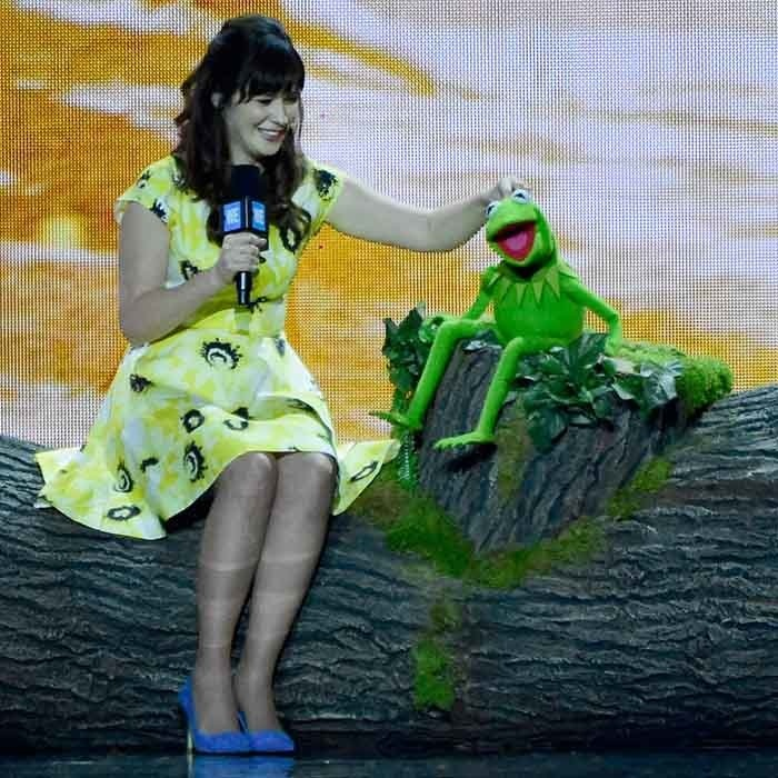 Kermit the Frog joked around with <i>New Girl</i>'s Zooey Deschanel at WE Day California in Los Angeles. 
