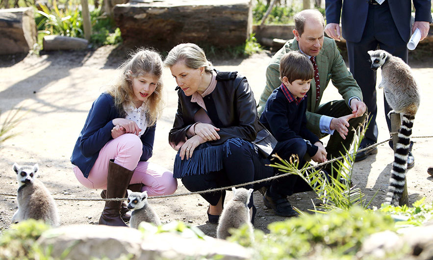 The Earl and Countess of Wessex and their children Lady Louise and James, Viscount Severn, feed lemurs during a visit to the Wild Place Project at Bristol Zoo. 