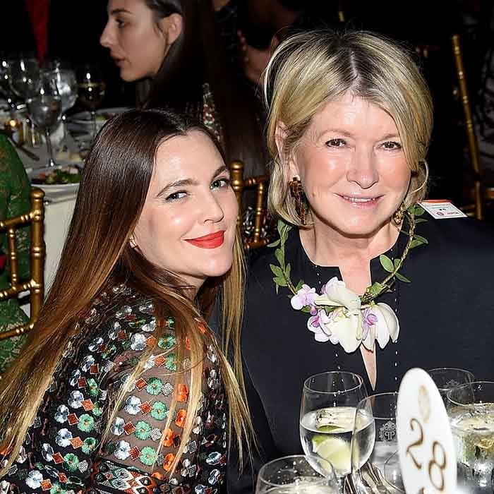 Newly-single Drew Barrymore and Martha Stewart enjoyed a wonderful night out at the ASPCA's 19th Annual Bergh Ball in New York City.