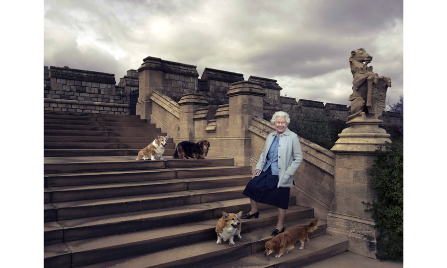 The Queen walking in the private grounds of Windsor Castle. The Queen is seen on steps at the rear of the East Terrace and East Garden with four of her dogs: clockwise from top left Willow (corgi), Vulcan (dorgie), Candy (dorgie) and Holly (corgi).