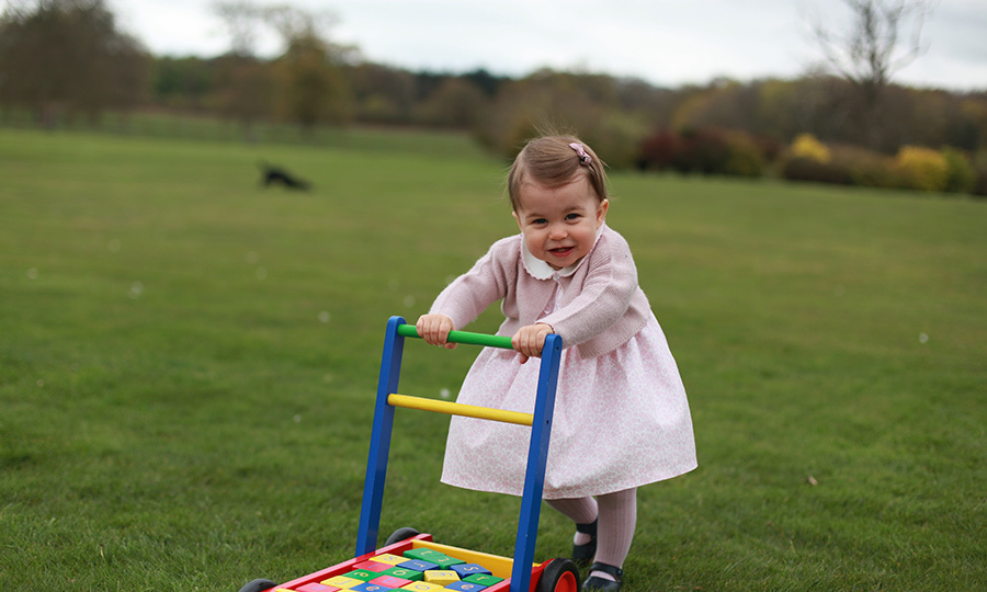 Charlotte shows off her walking skills in her 1st birthday portrait. 