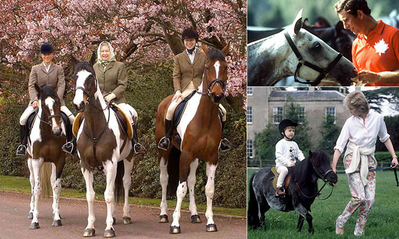 Horses have always played a major role in the lives of British royals. The Queen is enamoured with the four-legged creatures and even now, at age 90, still looks forward to saddling up for a stroll around the grounds of Windsor Castle. 