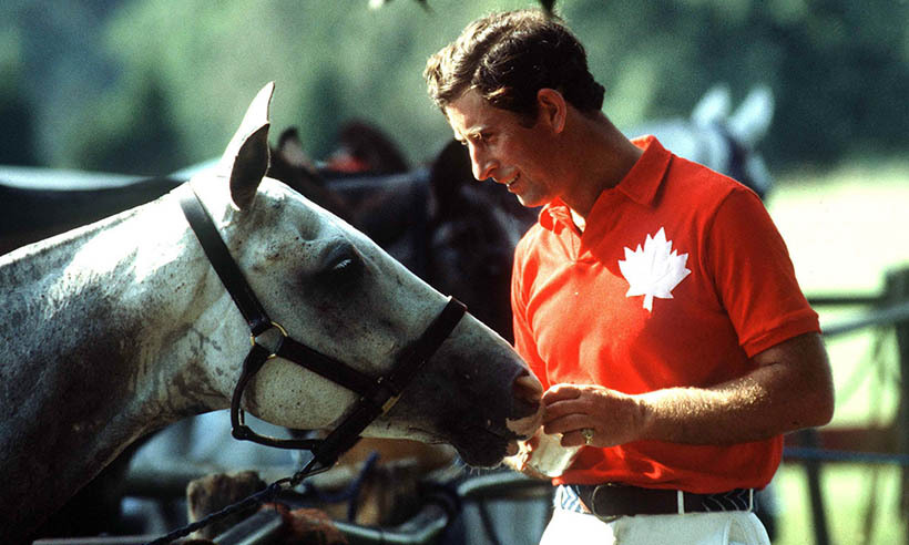Like his father, Prince Charles has an affinity for horses thanks to his lifelong love of polo. 