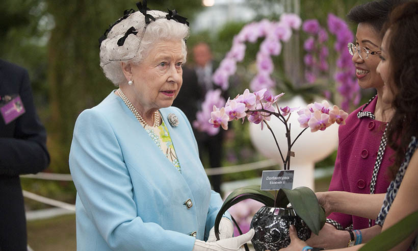 The Queen receives a pink orchid while exploring the London show in 2011.