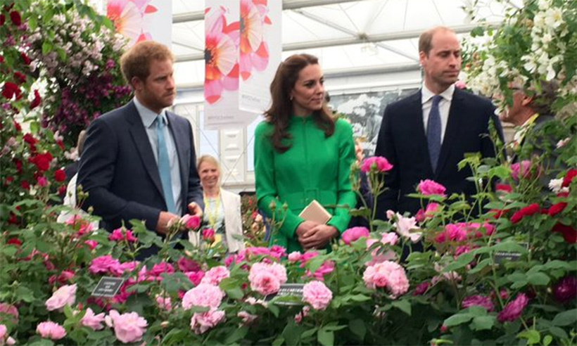 Prince William and Kate made their debut as a couple at the Chelsea Flower show in 2016, where they joined fellow royals like the Queen and Prince Harry to take in a chrysanthemum dedicated to Princess Charlotte.