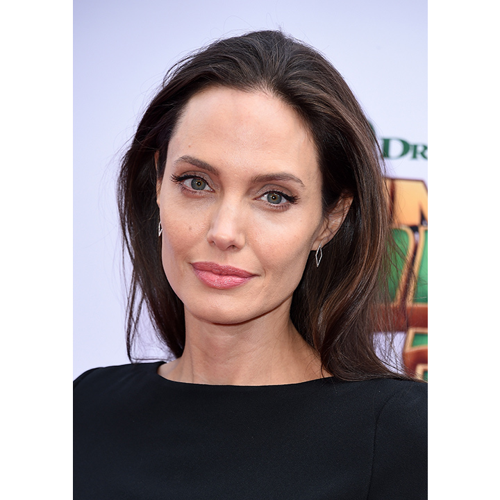 <h2>Angelina Jolie</h2>