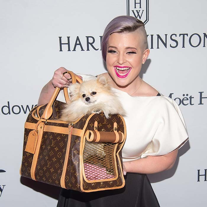 Kelly Osbourne had the cutest date on the red carpet at the 7th Annual anfAR Inspiration Gala in New York - her pet pooch Polly. 